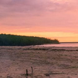 Tiwi Island Retreat sunset Tourism NT Mark Fitz - Crooked Compass by Air