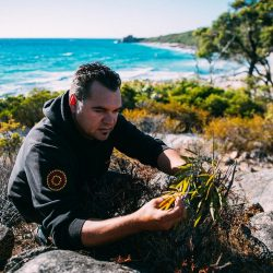 Cape Lodge Indigenous tour - Crooked Compass by Air