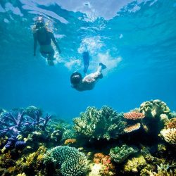 Snorkelling Lizard Island - Crooked Compass by Air