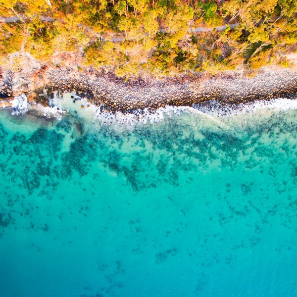 Aerial view of Noosa Beach, Sunshine Coast Australia - Crooked Compass by Air