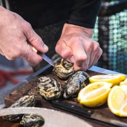Shucking oysters in Coffin Bay, SATC